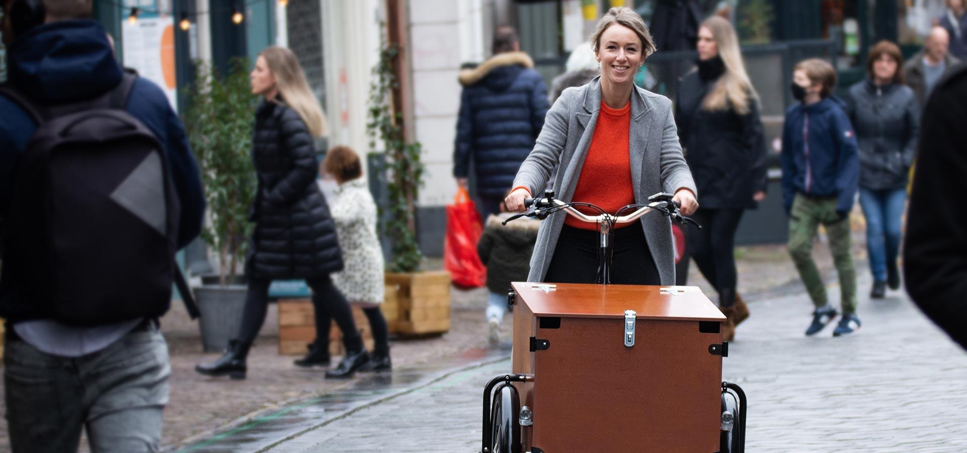 Babboe cargo trike